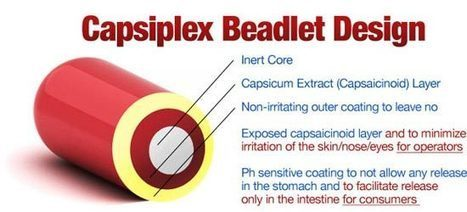 Can You Truly Burn 278 Additional Calories plus Lose 2lbs of Unwanted Flab Per Week With Capsiplex? | asd | Scoop.it