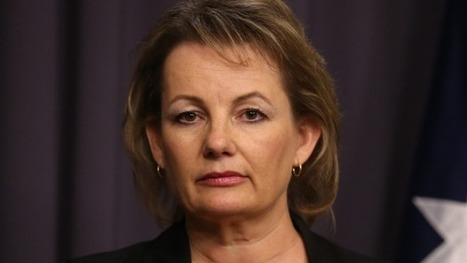 Mental health shake-up imminent, Health Minister Sussan Ley says - Sydney Morning Herald | Well being | Scoop.it
