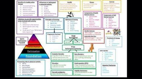 "BoswellsPE on Twitter: ""GCSE PE revision mat on topics 1.1.1-1.1.5. Hope it helps. http://t.co/67zXwdTPtj"" | Learning | Scoop.it"