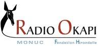 RDC : Radio Okapi, radio de l'ONU, coupée par les autorités | Radioscope | Scoop.it