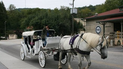 Dona K. Burke: Save the carriage horses from their slave drivers in Helen, GA!! | ~ADVOCATING FOR ALL ANIMALS~ | Scoop.it