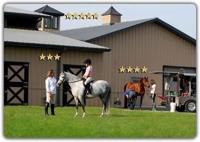 Ohio AG: Serenity Horse Rescue Shut Down | Rate My Horse PRO | Horse News | Scoop.it