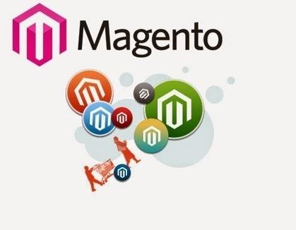 Avail Custom Magento Development Services to enhance your eCommerce Business Sales ~ TechnoScore | Development & Conversion Services | Scoop.it