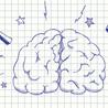 Learning & Mind & Brain