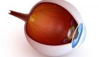Eye Glasses Gilbert Arizon | Eye Care Clinic Center in Mesa Arizona | Scoop.it