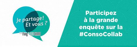 Participez à l'enquête sur la consommation collaborative ! | Innovations sociales | Scoop.it