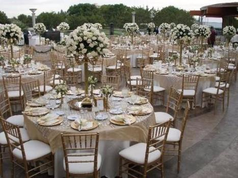 Sashes for Tiffany Chairs Sales   Ballroom Chair Sales Quote Melbourne   Chiavari Chair Sales   Scoop.it