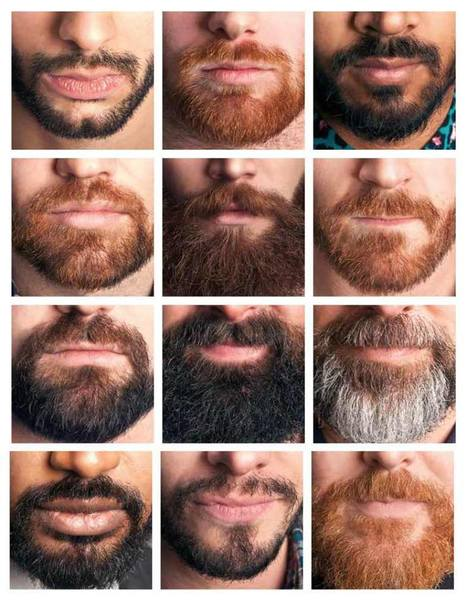 Different Styles Of Beards | Muscle Bears And Gay Fitness | Scoop.it