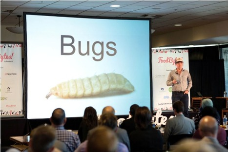Meet the FoodBytes! Boulder Winners: Mad Agriculture, The Honest Stand & FarmRaiser     Insect protein   Scoop.it
