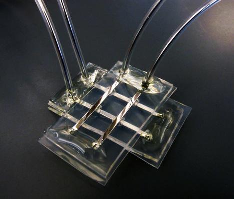 Neural network chip built using memristors | Heron | Scoop.it