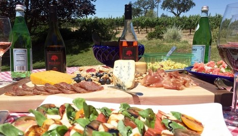 Vineyards: A Beautiful Place to Picnic | Santa Barbara Wine Tours | Scoop.it