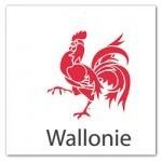 Le E-Commerce en Wallonie est en Retard | WebZine E-Commerce &  E-Marketing - Alexandre Kuhn | Scoop.it