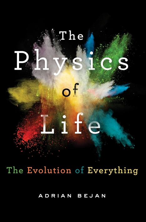 The Physics of Life, by Adrian Bejan | Asynsis Principle-Constructal Law | Scoop.it