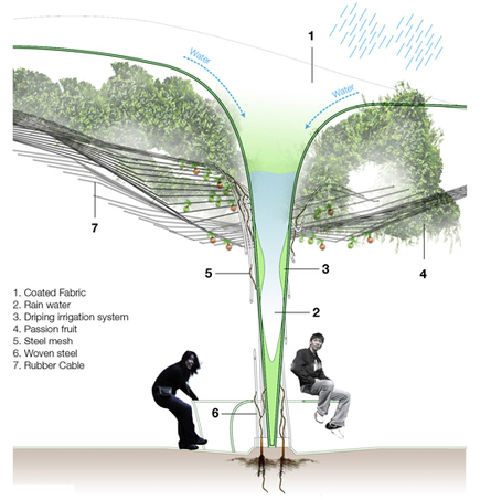 India Art n Design Global Hop : Urban Farming System. | India Art n Design - Creativity, Education & Business | Scoop.it