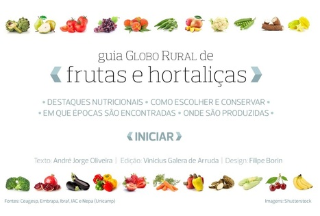Infográficos - Guia de frutas e hortaliças | Educational Innovations | Scoop.it