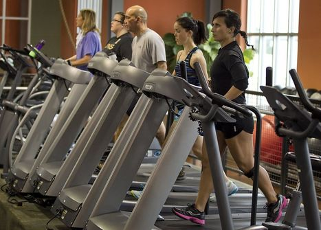 Fit City: Exercise helps the body cope with stress | Surviving Leadership Chaos | Scoop.it
