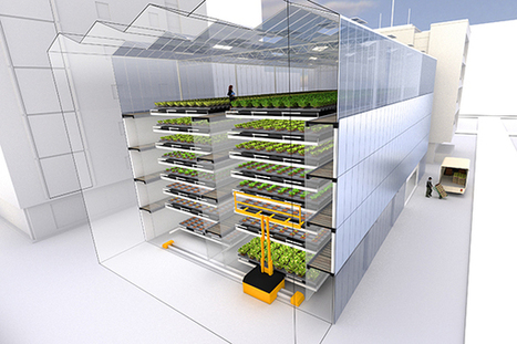 Lyon un projet de ferme verticale en ville - société - Tribune de Lyon   Vertical Urban Agriculture   Scoop.it