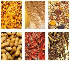Best Spices Exporters In India | Agrocrops | Scoop.it