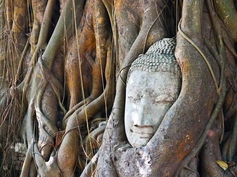 The Temples of Ayutthaya | Online Buddhism | Scoop.it