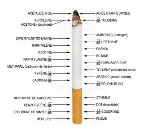 Arrêter de fumer: Voici ce qui arrive quand vous arrêtez   Science   Scoop.it