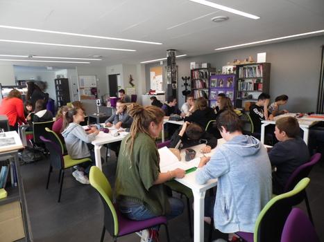 Collège Pasteur de Plaisance | Le Collège dans la presse | Scoop.it