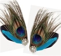 Peacock feather shoe clips | Shoe Clips - Shoe Accessories - Shoe Jewelry | Scoop.it