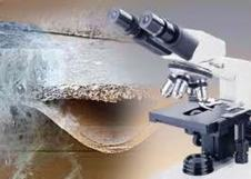 Asbestos testing necessary protection against deadly diseases | Comprehensive Environment Analysis | Scoop.it