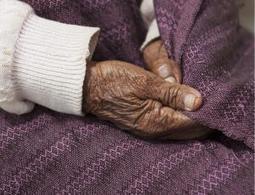 Turning back time: ageing reversed in mice - health - 19 December 2013 - New Scientist | kthxbye | Scoop.it