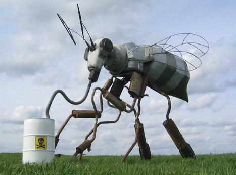 Mortalité des abeilles : les insecticides accusés - la Nouvelle République | Abeilles, intoxications et informations | Scoop.it