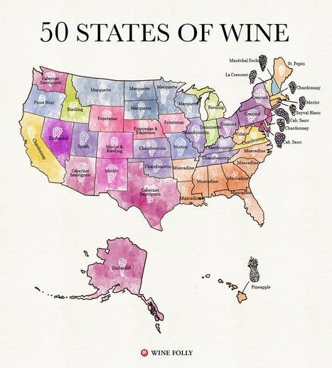 50 States of Wine (Map) | World Wine Web | Scoop.it