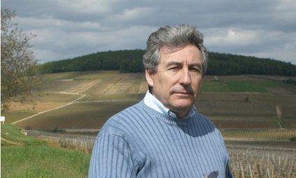 Interview : investir dans les groupements fonciers viticoles   Les investissements atypiques   Scoop.it