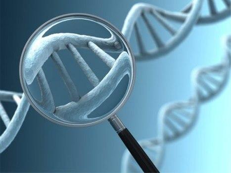 Sólo en un año se han diagnosticado trece nuevos genes asociados con el alzhéimer | Medicina | Scoop.it