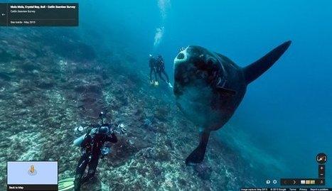 Google Street View invite à l'exploration sous-marine | Tout le web | Scoop.it