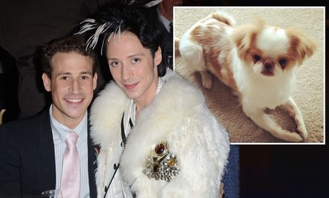 'He cheated on me with a porn star and a club owner': Johnny Weir's estranged ... - Daily Mail | Women: Relationships, alcohol, porn, lesbians, masturbation, swinging, fantasy, female sex predators and orgasm | Scoop.it