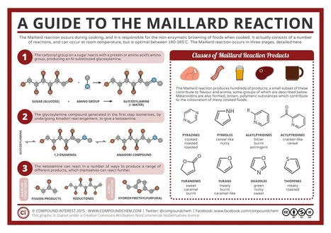 Food-Chemistry-The-Maillard-Reaction.png (2480×1754) | SCIENCE | Scoop.it