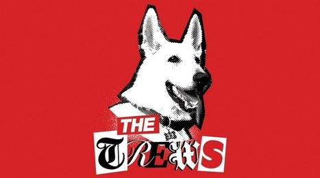 The Trews Behind Politics – A Brand New Political Alternative? | Peer2Politics | Scoop.it
