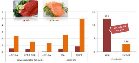 Making the Right Fish Choices: Fatty Acid Contents of 33 Different Fish Species. Plus: What Are the Implications? - SuppVersity: Nutrition and Exercise Science for Everyone | CHARGE Your Nutrition! | Scoop.it