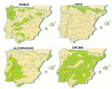 Geografía 2º Bachillerato   Geografía e Historia   Scoop.it