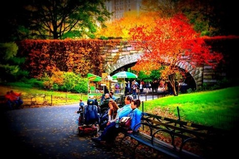 'Green Spaces' Linked To Increased Human Lifespan — New Study | A. Perry Design Lounge | Scoop.it
