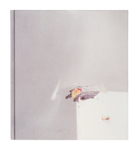 The Best Photo Books of 2015 -  NYT | As digitally seen ... | Scoop.it