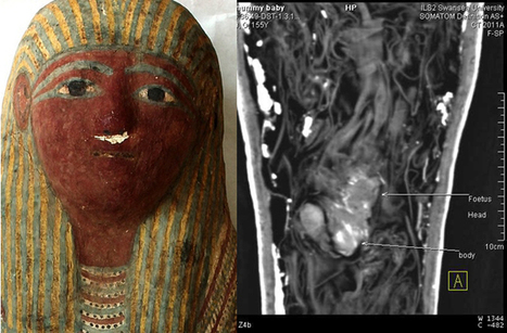 Mummified Fetus Found in Tiny Ancient Egyptian Sarcophagus | Egyptology | Scoop.it