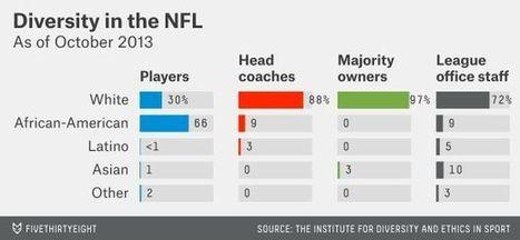 Race & Ethnicity | American Football Today McCastle W. | Scoop.it
