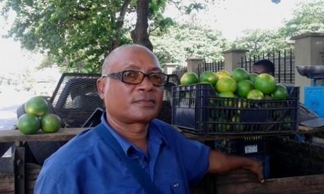 Agricultor diz que a praga de lagartos é consequência do milho importado | São Tomé e Príncipe | Scoop.it
