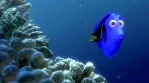 Finding Nemo 2 Nets Ellen DeGeneres First Of All | Animation News | Scoop.it