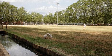Buscant consens sobre la Devesa de Girona | #territori | Scoop.it