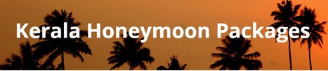 Kerala Honeymoon Packages | tourstokerala | Scoop.it