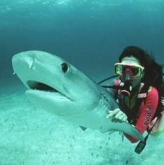 Top 10 Scuba Diving Locations in the World | SCUBA Marketing | Scoop.it