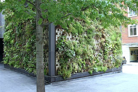 London: the green walls at New Street Square, EC4 | Flickr - Photo Sharing! | Vertical Farm - Food Factory | Scoop.it