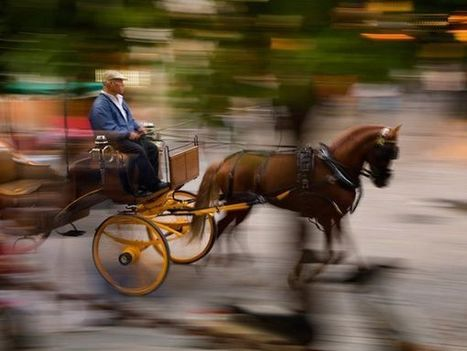 Jim Richardson on Panning to Capture Motion -- National Geographic | Travel Photography | Scoop.it