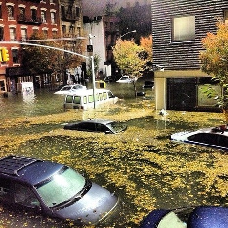 Toxic Brew of Chemicals Abound in Wake of Superstorm Sandy   EcoWatch   Scoop.it